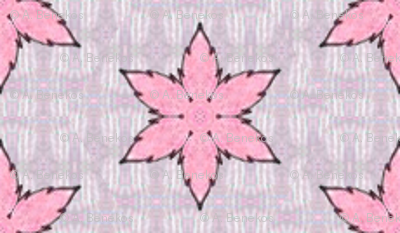 Parvati's Pink Starflower