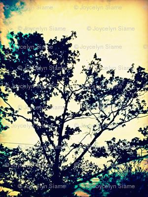 Among the trees.
