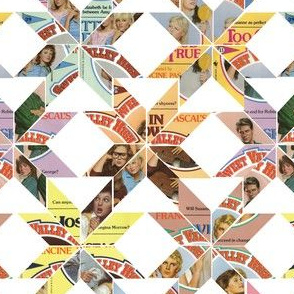 Sweet Valley High Book Quilt