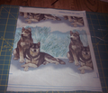 Rrsiberian_huskies5_comment_191092_thumb