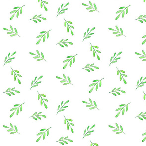 Modish blushing rose coordinate - fern leaf scatter