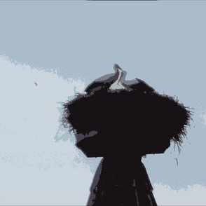 Nesting Storks -- Alsace, France