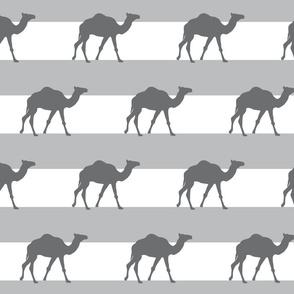 grey camel