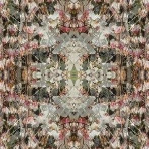 blossoms on Rubinowa
