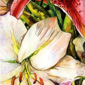 lilies001