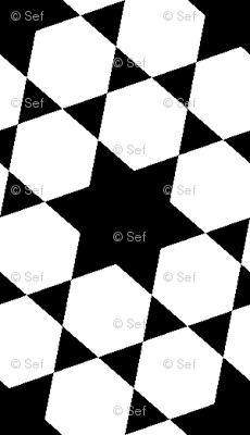 S633X E1