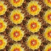 Rrrcactus_flower_repeat_shop_thumb