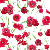 R1_yard_of_poppy_fresh_voile_for_dress_shop_thumb