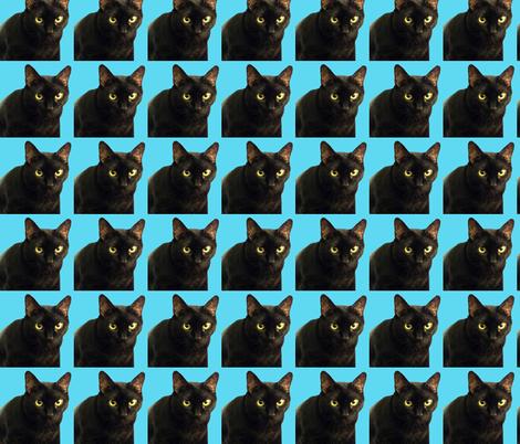 Velvet the Cat 4 Bright Turquoise Blue fabric by oceanpeg on Spoonflower - custom fabric