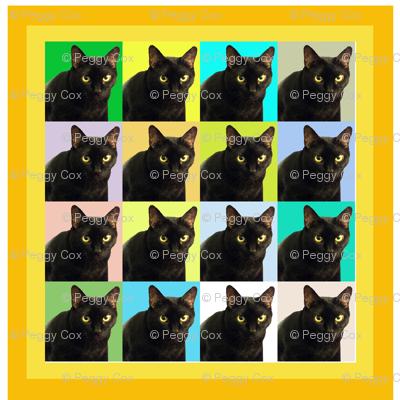 Velvet the Cat 165R Orange and Yellow Frame