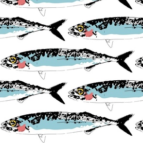 Mackerel_Graphic