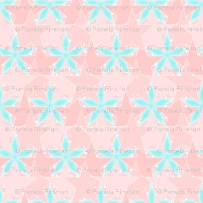 Star_Spots_-_Beach_Front