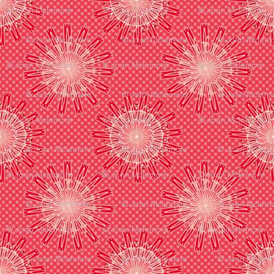 Cactus Flower coral