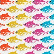 Rrainbow-fish_01_shop_thumb