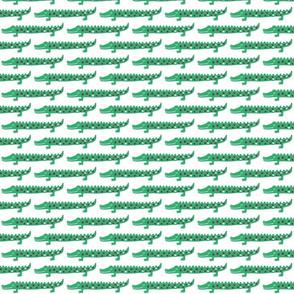 crocodile--