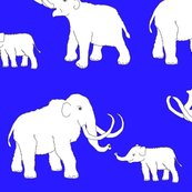 Rrmammoths_blue_shop_thumb