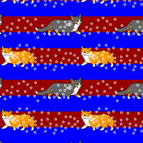 Corgis patriotic sparklers