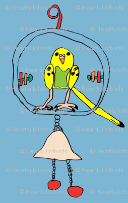 Budgie on Swing