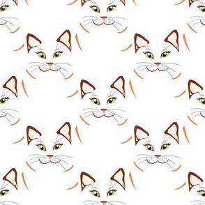 Cat_s_head