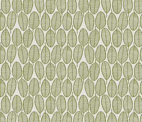 Rrjani_leaves_olive_shop_preview