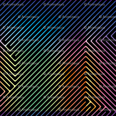Rainbow Enigma 2