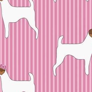 Kissing Terriers