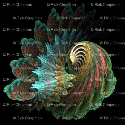 peacock original color