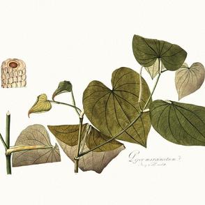 botanical pillow panel 3