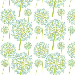 queen-annes-lace