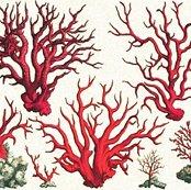 Rrrrvintage_corals_shop_thumb