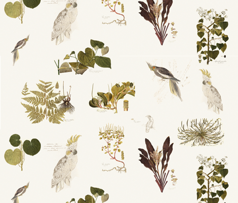 parrots and botanicals fabric by ravynka on Spoonflower - custom fabric