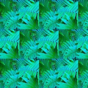 fern blocks