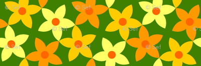 S43 flowers - pumpkin