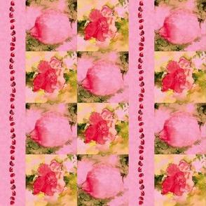 Pomegranate Flowers, Fruit, Seeds, S