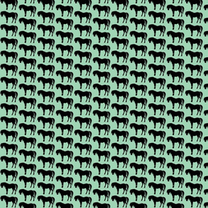 horse turquoise