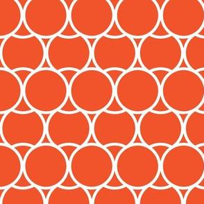 Modern Tangerine