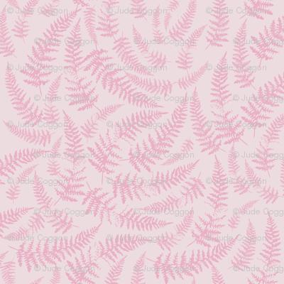 bracken_pale_pink
