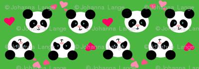 Panda Love Green Small