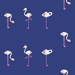 flamingoes blue small