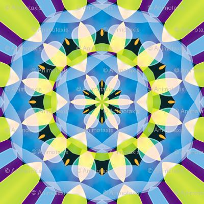 Crystal Kaleidoscope 1, S