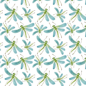 Dragonflies - Frolic Collection