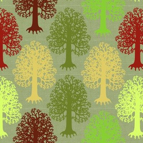 Trees in Forest Moss