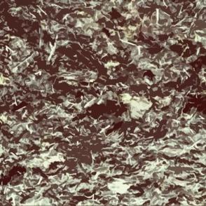 seaweed_2