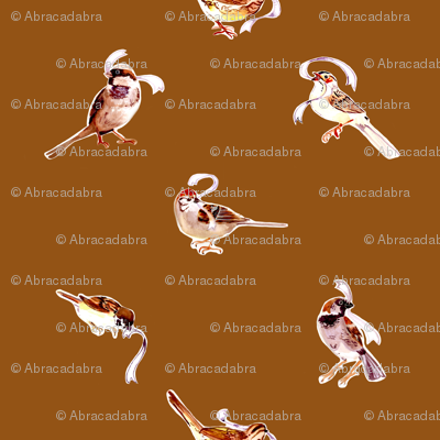 Fall Sparrows in Spice