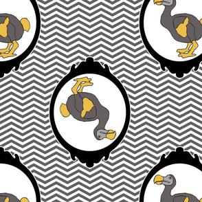 dodo1