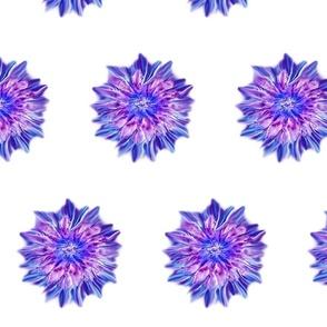 Encaustic_Flower