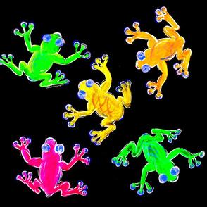 Rainforest Multicolour