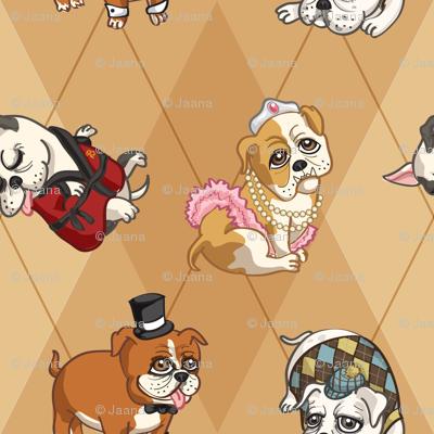 Fancy English Bulldogs (Tan)