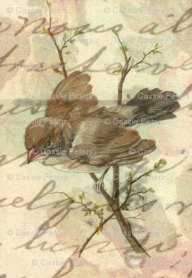 Vintage Sparrow