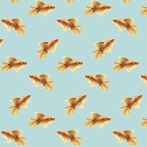 Golden Goldfish on Blue